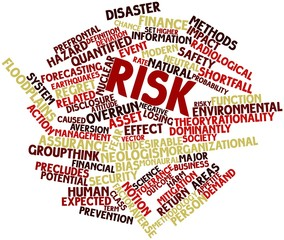 Word cloud for Risk
