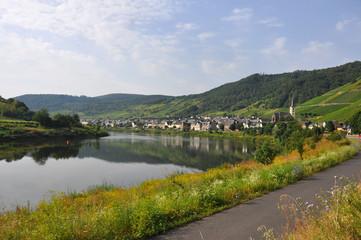 dorf an der mosel, deutschland