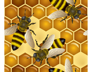 Honey seamless with bees