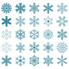 collection of 25 vector snowflakes