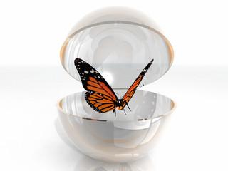 the beautiful butterfly in a open bubble