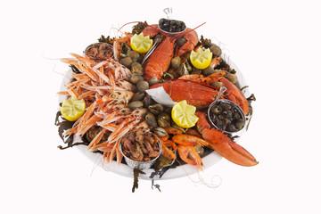 fruits de mer présentés dans un plateau