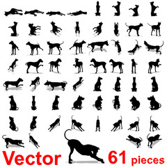 Vector conceptual collection of black dog silhouette