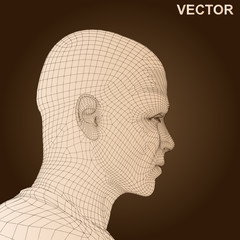 Vector conceptual wireframe human man head isolated