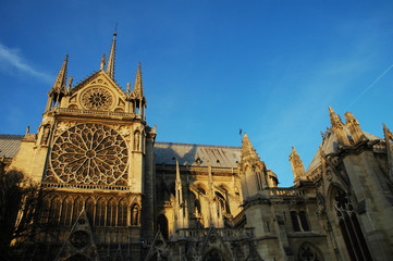 Retro di Notre Dame al tramonto, Parigi, Francia