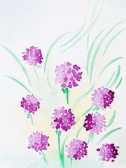 hand drawn watercolor illustration of purple flowers