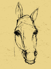horse sketch on paper