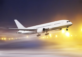Wall Mural - plane in snowstorm