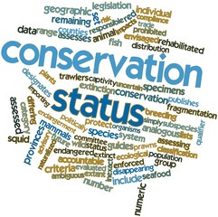 Word cloud for Conservation status