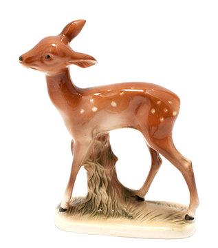 Roe deer calf