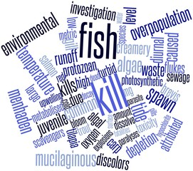 Word cloud for Fish kill