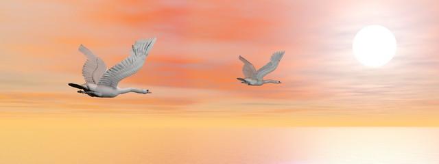 Wall Murals Birds, bees Swans migration - 3D render