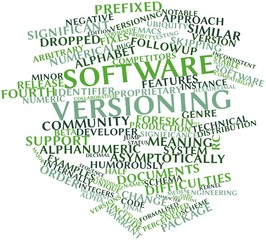 Word cloud for Software versioning
