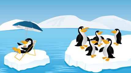 Poster Oiseaux, Abeilles Penguins