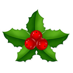 Christmas Holly Berry