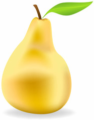 Vector ripe pear