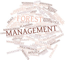 Word cloud for Forest management