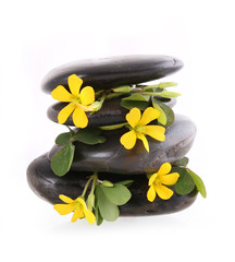 spa stones with yellow flowers isolated on white