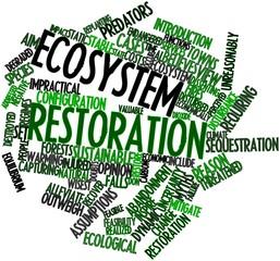 Word cloud for Ecosystem restoration