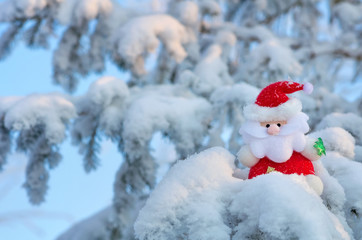 Santa Claus sits on a snow-covered Christmas tree branch.