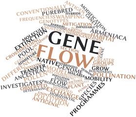 Word cloud for Gene flow