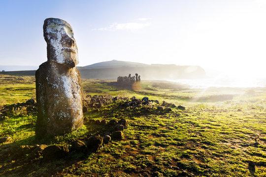 Standing moai in sunshine in Easter Island