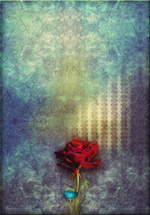 Garden Poster Imagination Red rose in to blue deep