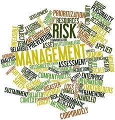 Word cloud for Risk management