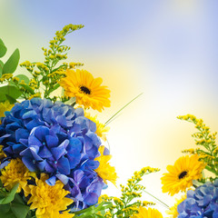 Fototapete - Bouquet from blue hydrangeas and yellow asters