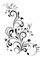 Beautiful black swirl floral design