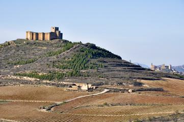 Wall Mural - Castillo de Davalillo, La Rioja (España)