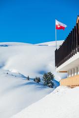 Waving Austrian flag