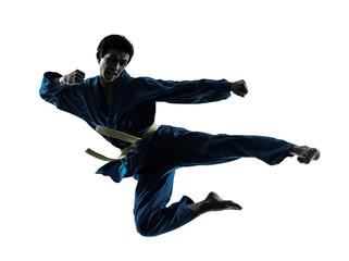 In de dag Vechtsport karate vietvodao martial arts man silhouette