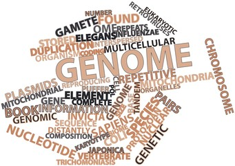 Word cloud for Genome