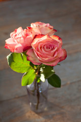 Pink roses in a vase on wooden background