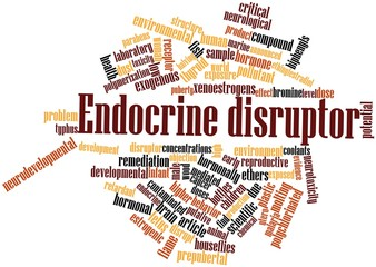 Word cloud for Endocrine disruptor