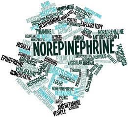 Word cloud for Norepinephrine