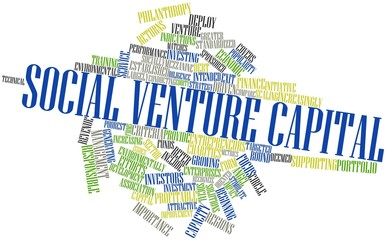 Word cloud for Social venture capital