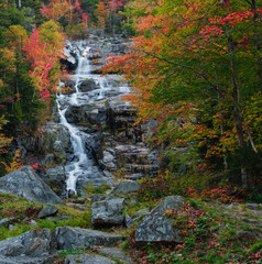 Beautiful cascade and fall foliage.
