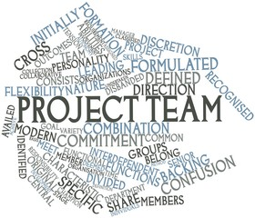 Word cloud for Project team
