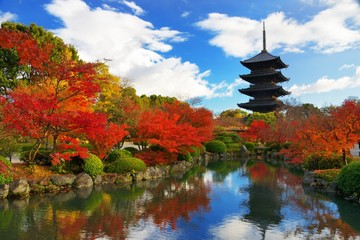 Foto op Aluminium Japan Toji Pagoda in Kyoto, Japan