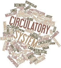 Word cloud for Circulatory system