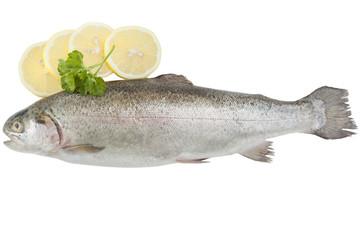 Trout and lemon
