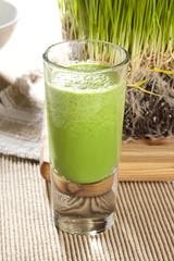 Green Organic Wheat Grass Shot