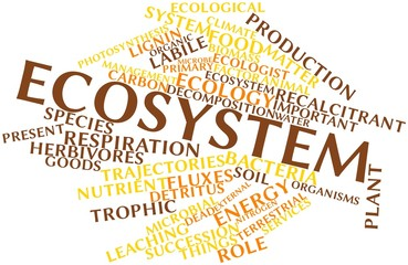 Word cloud for Ecosystem