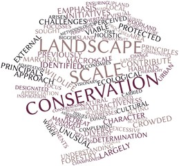 Word cloud for Landscape scale conservation