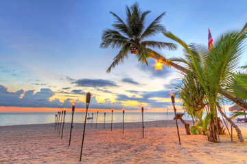Sunset under tropical coconut palm tree in Thailand