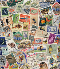 Postage Stamps of Animals, Birds, Insects & Fish