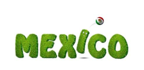 Mexico soccer.