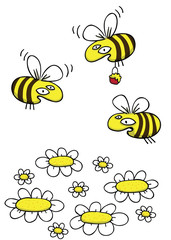 Honey Bees and Daisies